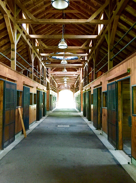 12_Stables_556x750